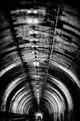 Five Minute Tunnel (Thomas Hawk) Tags: 5minutetunnel america baker–barrytunnel bayarea bunkerroadtunnel california marin marincounty marinheadlands sfbayarea sausalito usa unitedstates unitedstatesofamerica westcoast tunnel fav10 fav25 fav50