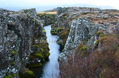 Iceland  A meeting of 2 continents (Flame1958) Tags: iceland 2continents 7578 water thingvellirnationalparkiceland thingvellir national park24111411142014almannagjá fault þingvellir