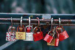 Love Locked (Rick & Bart) Tags: goslar germany deutschland niedersachsen city urban rickvink rickbart canon eos70d historic architecture unescoworldheritagesite padlock lock metal