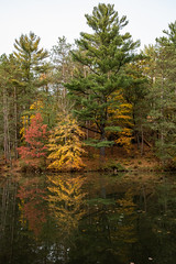 Fall Reflection (Greg Riekens) Tags: autumn fallcolors nikond500 mirrorlake trees fallleaves landscape midwest fall statepark mirrorlakestatepark