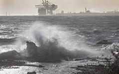 windy daay-39 (barrie.barrington11) Tags: waves pointroberts wind robertsbank storm delta britishcolumbia canada