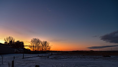 Last moment colours (darletts56) Tags: sky blue purple pink yellow orange gold golden greyy cloud clouds tree trees home house field fields prairie country countryside post posts road village valley sunset sundown evening dusk night white snow view silhouette black