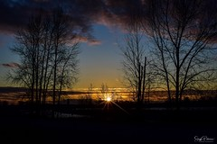 Pitt River Sunset - Pitt Meadows, BC (SonjaPetersonPh♡tography) Tags: pittriver sunset nikkor afsdxnikkor18300mmf3563gedvr nikon nikond5300 bc britishcolumbia canada pittmeadows silhouettes silhouette sky clouds colours trees pittmeadowsdyke nature outdoors river
