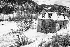 Maysville, Colorado (paccode) Tags: solemn sprucetrees d850 landscape winter bushes brush serious quiet snow trees blackwhite abandoned barn monochrome shack field house colorado clouds scary forgotten creepy hills mountain salida unitedstatesofamerica
