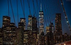 Blue hour from Brooklyn Bridge (ricardocarmonafdez) Tags: manhattan newyork nyc puente bridge brooklyn arquitectura architecture bluehour luces lights lighting colors blue ricardocarmonafdez ricardojcf nikon d850 24120f4gvr