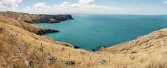 Banks Peninsula  New Zealand. (Bernard Spragg) Tags: bankspeninsula newzealand samsungs9 cellphone smartphone landscape seascape coastalscenery scenery pacificocean