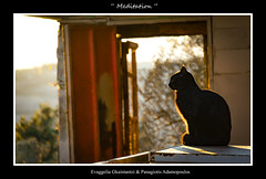 """ ... Meditation ... "" (E  \    G  \/  /-\) Tags: meditation maneeshdemoor moolameditation"