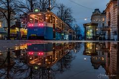 Gothenburg Reflection (Fredrik Lindedal) Tags: tram gothenburg göteborg puddle puddlegram avenyn reflection reflections streetview street streetvision streetsvision trees lights lindedal sweden sverige streetlight