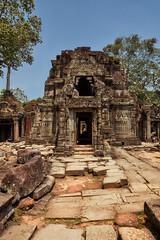 Preah Khan – Temple (Thomas Mulchi) Tags: preahkhan angkor siemreap cambodia 2018 siemreapprovince wallcarvings stonecarving krongsiemreap