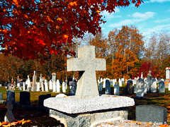 ... (Jean S..) Tags: autumn fall colors cemetery cross graves red tree