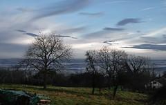 Inversion (Fay2603) Tags: inversion wetter landscape landschaft himmel sky clouds wolken nuvole bäume weitsicht badenwürttemberg schwabenland schwäbisch gmünd fujixt1 fujifilm