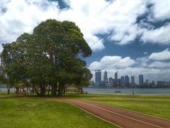 Trees and skyline (sander_sloots) Tags: trees bomen perth panasonic bike path lane skyline skyscrapers south bank swan river rivier wolken clouds wolkenkrabbers lumix dctz90 uitzicht view fietspad grass lawn gras grasveld western austalia west australië