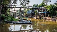 2019 - Vietnam-Avalon-Siem Reap - 14 - Mekong River Cu Lao Gieng (January) Island (Ted's photos - Returns Early February) Tags: 2019 avalonwaterways cropped culaogieng mekongriver nikon nikond750 nikonfx tedmcgrath tedsphotos vietnam vignetting reflection waterreflection boats footbridge stilts