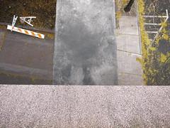 Scheincollage mit Gefallenem / Pseudo-Collage with Things Fallen (bartholmy) Tags: hartford ct straightdown blicknachunten absperrung barrier ständer horses laub blätter leaf leaves gingko gehweg sidewalk strase street road asphalt tarmac strasenmarkierung streetmarkings schraffur crosshatching driveway einfahrt beton concrete aggregate laternenmast lamppost minimal minimalism minimalistisch minimalismus abstrakt abstract