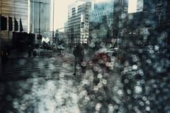 Walk on the wild side (ewitsoe) Tags: moments nikon street warszawa winter erikwitsoe urban warsaw glass bokeh balls light people transit commute walking streetcorner haze cityscape obscured day afternoon