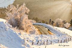 Paysage d'hiver revisité (guysamsonphoto) Tags: guysamson landscape paysage neige snow froid cold winter hiver montarthabaska victoriaville luminar4