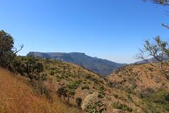Mountainous Mpumalanga (Rckr88) Tags: mpumalanga southafrica mpumalangasouthafrica south africa mountainous mountainousmpumalanga mountain mountains nature outdoors travel green greenery