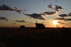 Evening Harvest (scolba) Tags: sunset midwest harvest combine tractor