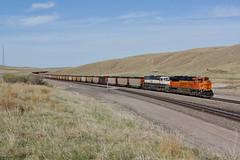 BNSF 9002 Hyannis/Nebraska (Gridboy56) Tags: bnsf usa america nebraska hyannis wagons freight diesel coal cargo locomotives locomotive trains train railways railroad railfreight emd 9002 9521