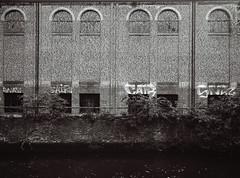 Dukes Wharf Graffiti | Norwich (Edd Hughes) Tags: fuji fujifilm ga645 mediumformat 120 120film film illford hp5 645 blackandwhite blackwhite bw monochrome mono graffiti graff urban urbanphotography street streetphotography streetart norwich abandoned decay riverbank ishootfilm filmsnotdead