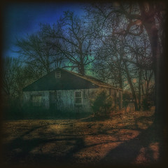 Backroad shadows.... (Sherrianne100) Tags: shadows trees vinecovered oldhouse backroads rural ozarks missouri