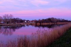 Blue-Rosé Evening in January (swetlanahasenjäger) Tags: ryckfluss greifswald mecklenburgvorpommern deutschland abendfarbeninjanuar coth5 saariysqualitypictures sunraysshowcaseaward coth contactgroups