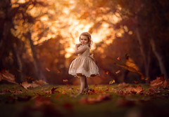 My Girl ({jessica drossin}) Tags: jessicadrossin girl child dress toddler leaves leaf park trees forest light orange cute wwwjessicadrossincom