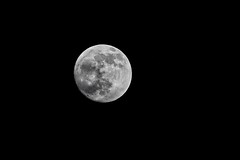 366 - Image 009 - Moon... (Gary Neville) Tags: 366 366images 7th365 photoaday 2019 sony sonyrx10iv rx10iv rx10m4 garyneville