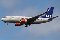 SAS SE-REZ LHR 07/08/19 (ethana23) Tags: planes planespotting aviation avgeek aircraft aeroplane airplane boeing 737 737700 sas