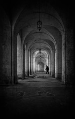 The path Do not go where the path may lead. Go where there is no path and leave a trail. (Fan.D & Dav.C Photgraphy) Tags: no people architecture arch architectural feature column indoors day history corridor old built structure the way forward spirituality colonnade travel destinations medieval blackandwhite bw blackandwhitestreetphotography bwphotography blackandwhitephotography