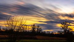 Winter sunset... (mike   MKvip.photo) Tags: sony⍺7rmarkii sony⍺7rii sonyilce7rm2 sonyalpha7rm2 sonyalpha sony alpha emount ⍺7iii ilce7rm2 ibis sigmafe50mmƒ14dghsm a sigma art 50mmƒ14 sonysmoothreflectionapp availablelight naturallight backlight backlighting sunset sunsetlight dreamy soft zen nature green orange yellow winter neuburg germany europe mth mkvip sigmafe50mmƒ14dghsm art ngc npc