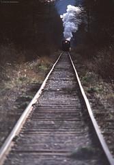 Slow Train Coming - Washington State (Electric Crayon) Tags: steamtrain railroad railway tracks pacificnorthwest washingtonstate kingcounty snoqualmie usa unitedstates america rural outdoors analog minolta 35mm kodak kodachrome slidefilm filmgrain 35mmscan primefilmxa electriccrayon patrickmcmanus