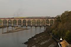 No9 On The Border Bridge (Derbyshire Harrier) Tags: lnera4class462no60009unionofsouthafrica steamengine 2019 spring berwickupontweed northumberland railway rivertweed eastcoastmainline railtour wcrc rtc theborderbridge northeast 1z10 theedinburghflyer