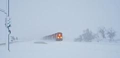 Tehachapi white out (delticfan) Tags: tehachapi snow blizzard bnsf burlingtonnorthernsantafe bnsf7755 bnsf7724 bnsf7826 bnsf4430 bnsf515 ns7705 ns9723