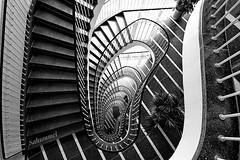 Stripes (Sockenhummel) Tags: treppe stairwell stairway staircase treppenhaus blackwhite architektur streifen schwarzweis architecture stairs steps downstairs stufen escaliers escaleros fuji xt10 gestreift ohr oval fus