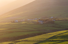 West Kerry Sunset (josullivan.59) Tags: 2019 artistic ireland may tamron150600 backlit day detail europe evening goldenhour green landscape light nicelight outdoor outside scenic sunset sunsetlight telephoto travel wallpaper warm weather kerry lispole dinglepenninsula