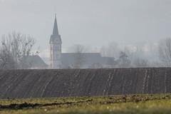 Tagsdorf dans la brume (Gisou68Fr) Tags: tagsdorf sundgau alsace 68 france hautrhin grandest église village church champs fields arbres trees brume mist