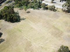 Looking down (Paul Threlfall) Tags: djimavicproplatinum tramtracks melbournezoo royalpark shadows aerial flight melbourne victoria australia drone