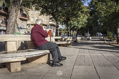 Old read (Sr.Ivan) Tags: old ancient anciano viejo personamayor elche visitelche elx costablanca alicante street streetphotography streetphoto canon eos m50 canonm50 canoneosm50 22mm 35mm 35mmphotography