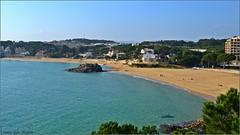 Playa de La Fosca (Luisa Gila Merino) Tags: mar agua landscape cielo paisaje cieloazul maisema mediterráneo cataluña palamós lafosca playa población árbol arena marazul azul beach