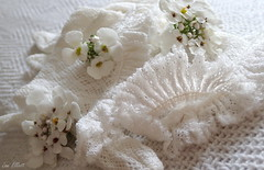 WHITE Lace Wedding  Gloves....Looking close...on Friday ! (Lani Elliott) Tags: gloves weddinggloves lace flowers pretty delicate whitebackground bokeh macro upclose closeup yesteryear vintage antique candytuft stilllife lanielliott white lookingcloseonfriday patterns textures textured patterned
