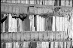 Fundstück 37 / Find 37 (Harald Reichmann) Tags: holz fundstück schnitt muster unterlage alltagskunst