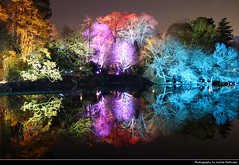 Enchanted Forest Reflection, Winterlichter, Palmengarten, Frankfurt, Germany (JH_1982) Tags: enchanted forest reflection fairy tale woods wald tree trees baum bäume lake see winterlichter palmengarten winter lights light art kunst installation colour color colours colors park garden artistic künstler farbe glow glowing leuchten dunkel dark darkness nacht night nuit noche notte 晚上 夜 ночь beleuchtet beleuchtung lumière luz 光 свет evening frankfurt frankfurter francfort fráncfort francoforte meno 美因河畔法兰克福 フランクフルト フランクフルト・アム・マイン франкфурт hessen hesse germany deutschland allemagne alemania germania reflections mirror spiegelung spiegel