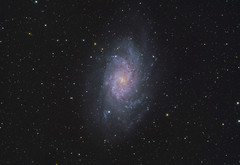 Triangulum Galaxy through Telescope (AstroBackyard) Tags: triangulum galaxy telescope astrophotography real space stars camera zwo asi294mc pro m33 messier 33 true color broadband filter