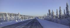 The beauty of winter - Alaska (JLS Photography - Alaska) Tags: alaska alaskalandscape glennhighway highway wilderness winter road jlsphotographyalaska trees frost frozen frosty freezing travel beautifulscenery cold