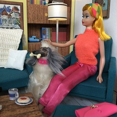 9. Visiting with friends (Foxy Belle) Tags: doll barbie vintage dream house living room 16 scale retro miniature dollhouse dog midge