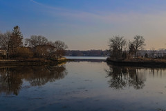 Cove Island (CraDorPhoto) Tags: canon6d trees usa reflection water landscape outside outdoors ct