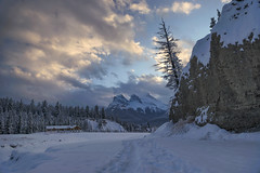 Sunset in Canmore (Varvara_R) Tags: canada alberta winter evening sunset sky clouds silhouette tree trees mountain mountains mountainscape mountainrange threesisters canmore nature scenery tranquility horizontal nopeople geotagged coth5