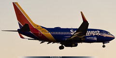 N7841A (M.R. Aviation Photography) Tags: boeing 7377l9 n7841a southwest airlines lax los angeles california united states aviation aviacion airplane plane aircraft avion sony a7 a6 z7 d850 d750 d650 d7200 photo photography foto fotografia pic picture canon eos pentax sigma nikon b737 b747 b777 b787 a320 a330 a340 a380 alpha alpha7