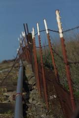 Fine Fencing (murraymike89410) Tags: dinuba california gleaningsforthehungry 100400 hff